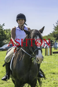 SPRING VALLEY STABLES HORSE SHOW