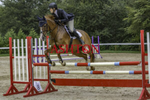 DORSET SHOW GROUND Show Jumping Friday 30th July 2021 Class 3
