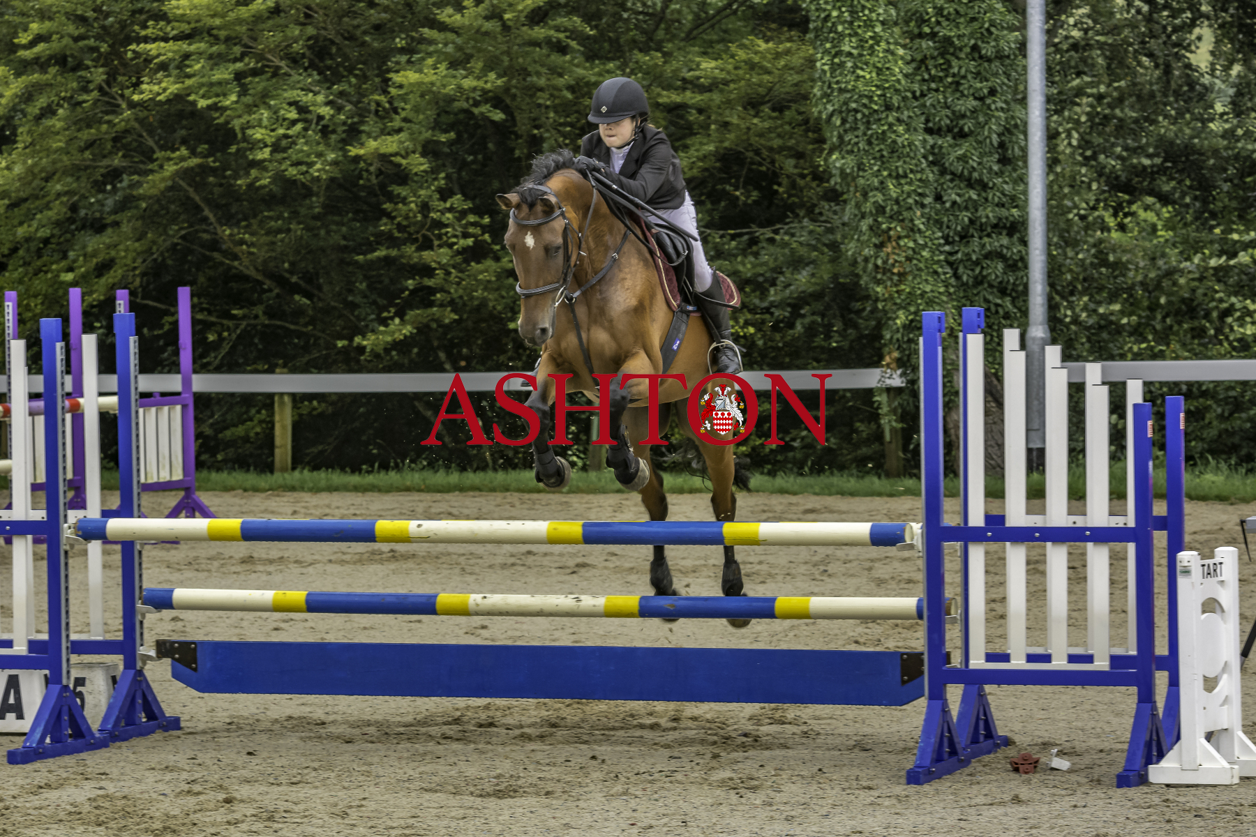 DORSET SHOW GROUND Show Jumping Friday 30th July 2021 Class 4