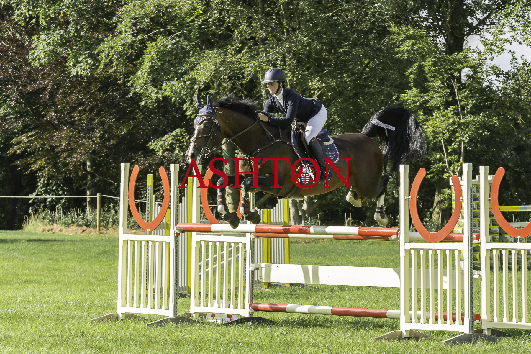 DORSET SHOW GROUND Show Jumping Friday 30th July 2021 Class 9